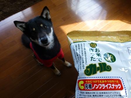 お米で作ったカール3