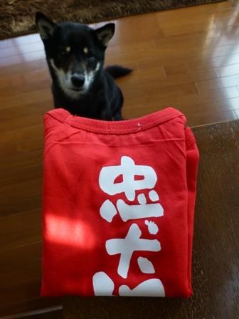 犬屋Tシャツ3