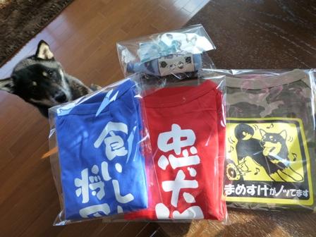 犬屋Tシャツ38