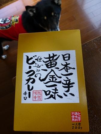 日本一辛い黄金一味仕込みのビーフカレーは危険なほど辛いのか実食! | 激辛大好きネタなべのアチアチアーチッチ和歌山