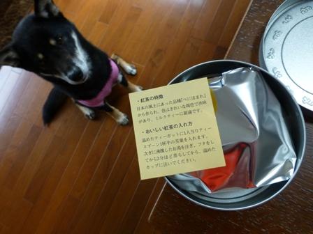 信楽鳥羽伊勢旅行お土産4