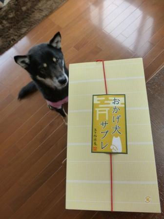 信楽鳥羽伊勢旅行お土産9