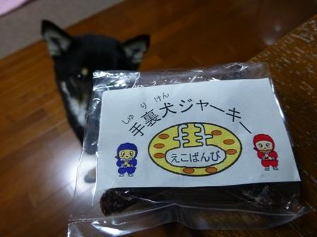 忍者犬変身27