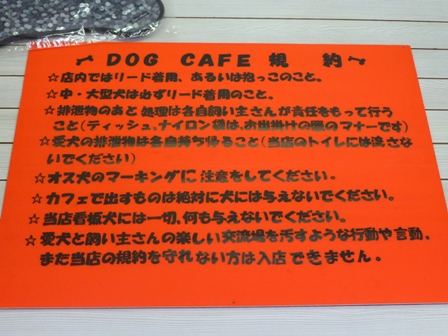DOG CAFE WILL16