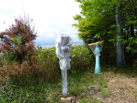 関の五本松公園12