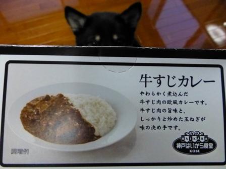 牛すじカレー3