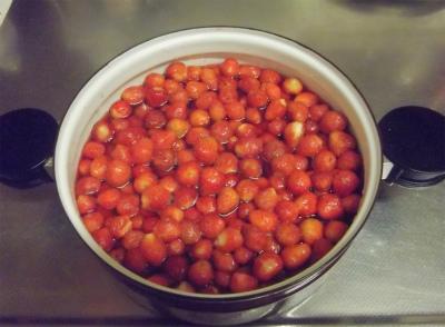 苺ジュースが滲出してヒタヒタになりました