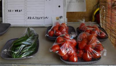 キュウリ&トマト