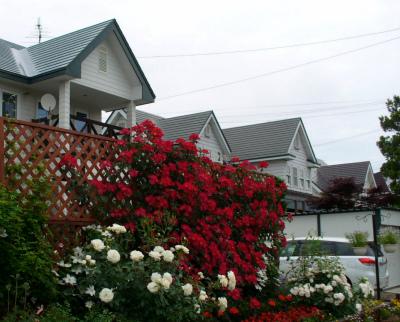 ご近所の風景