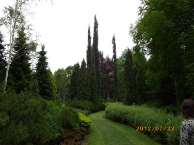 真鍋庭園 1