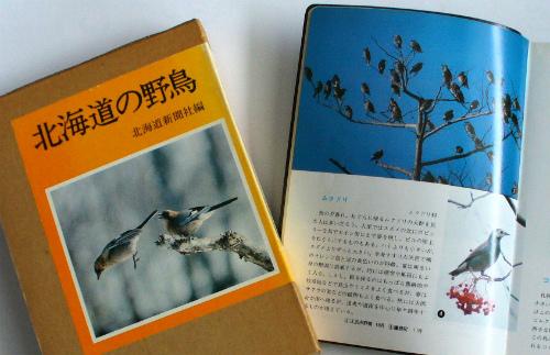 図鑑 「北海道の野鳥」