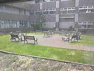garden0502.jpg