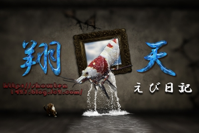 20121021112038ff9.jpg