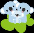 koala0724