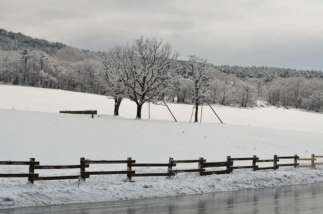 DSC_2901大山雪景色