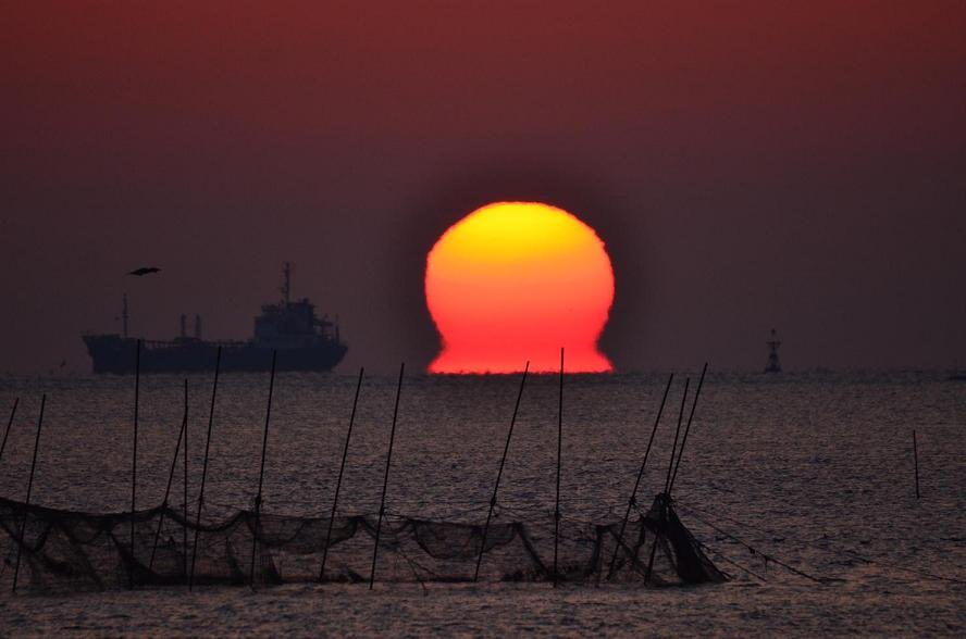DSC_5165番田の太陽