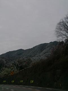 2014-02-06001.jpg