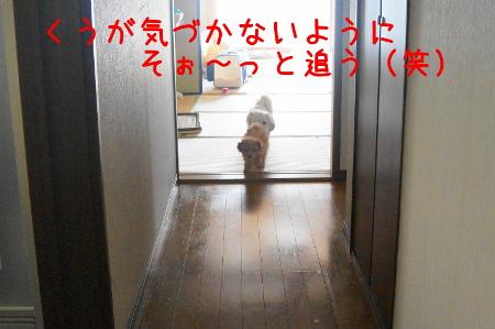 20121005095933746.jpg