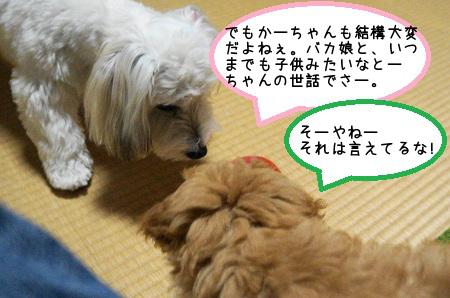 201210111000368ad.jpg