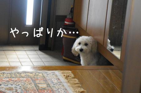 20121012102804310.jpg