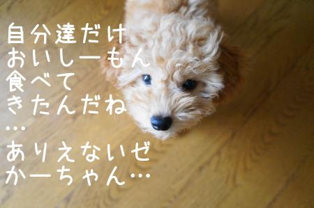 20121015103529161.jpg