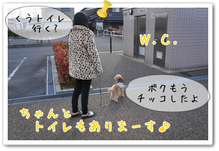 201303062012466ed.jpg
