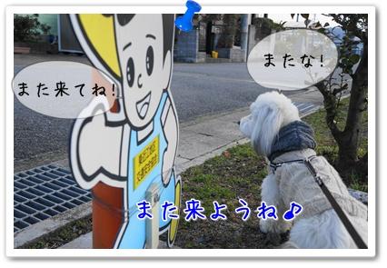 20130306202855efc.jpg