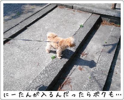 201303201744049aa.jpg