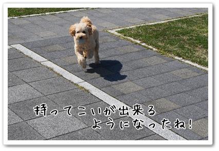 2013032521071515a.jpg