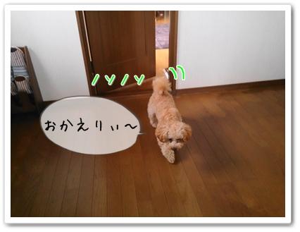 201304250641000d4.jpg