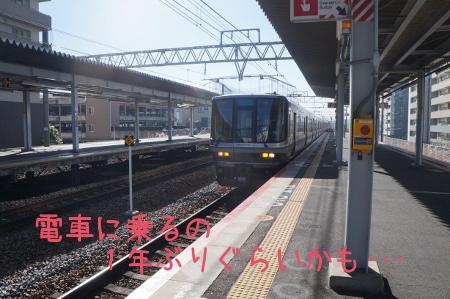 DSC00384.jpg