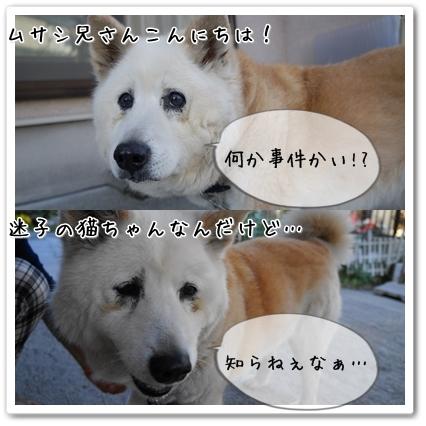 page7_20130520220607.jpg