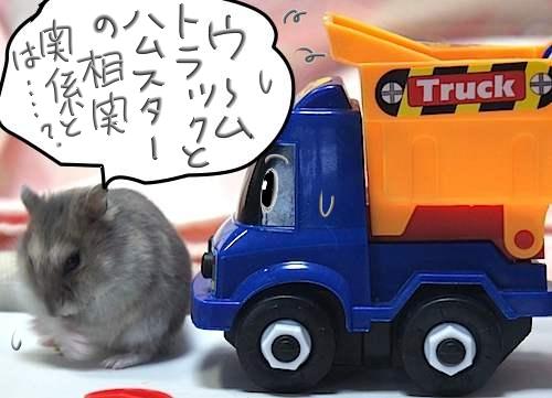 トラックとハムスターの相関関係とは・・?