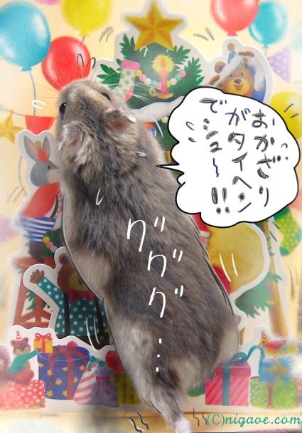 お飾りがタイヘンでシュ〜!!!