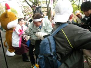 sakuraishicho.jpg