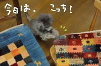 20120603030553ec9.jpg