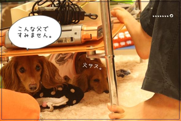 IMG_66861.jpg