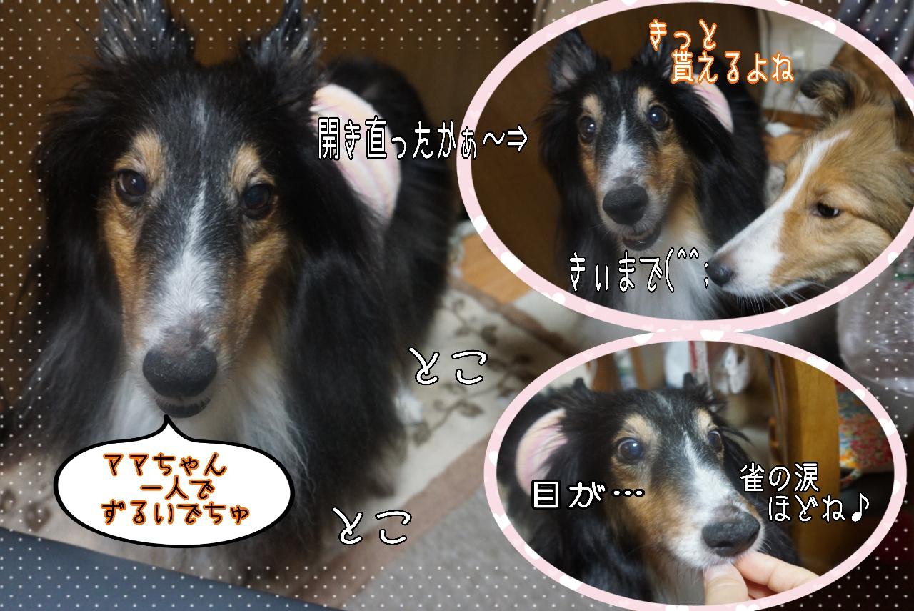 2014-10-25-09-40-13_deco.jpg