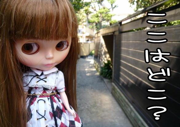 f13_20120420135103.jpg