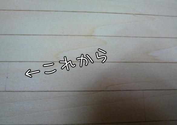 f13_20121022094238.jpg