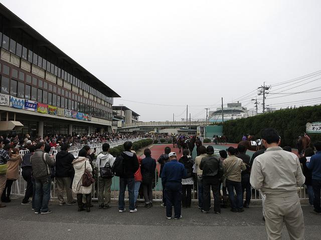 FukuyamaKeiba_130317_03.jpg