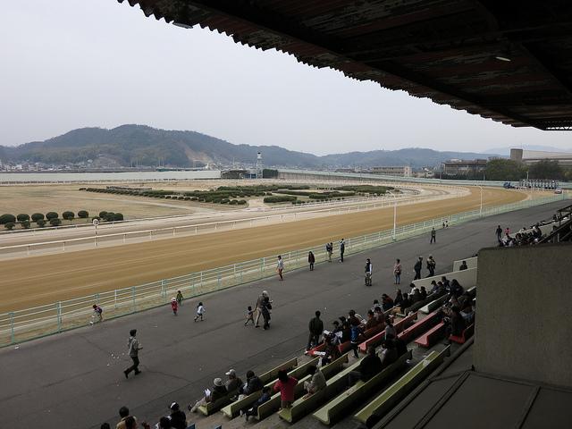 FukuyamaKeiba_130317_06.jpg