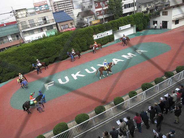 FukuyamaKeiba_130317_12.jpg