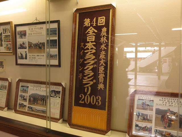 FukuyamaKeiba_130317_18.jpg