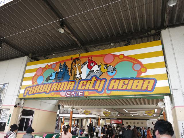 FukuyamaKeiba_130324_01.jpg