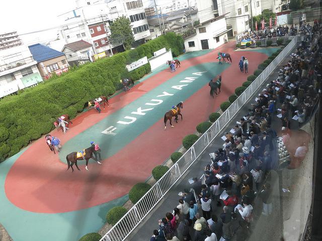 FukuyamaKeiba_130324_03.jpg