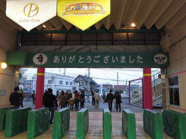 FukuyamaKeiba_130324_15.jpg