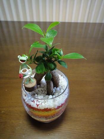 2012.5.6.母の日プレゼント(千春)